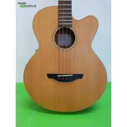 Takamine G Series Acoustic...