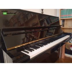 Tokai Pianino